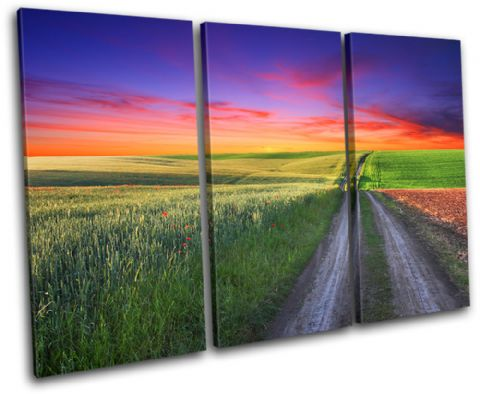 road Countryside Sunset Seascape - 13-0200(00B)-TR32-LO